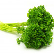 Parsley — Stock Photo #2488425
