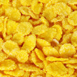 Corn flakes — Stock Photo #2489244
