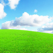 Royalty-Free Stock Photo: Grassland
