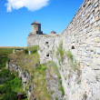 Stockfoto: Fort in kamjanets podolsk