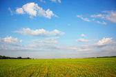Pięknie krajobraz — Zdjęcie stockowe