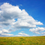 Grassland — Stock Photo #1017129