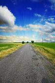 Beautifully road — Stock Photo