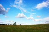 Grassland — Stock Photo
