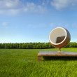 Meditation ball chair at grass field — Stock Photo