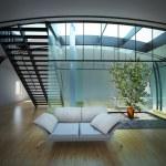 Modern empty interior with plant — Stock Photo