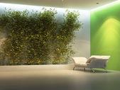 Empty interior with plant — Stock Photo