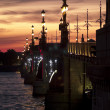 St. Petersburg at night - Stock Photo