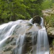Waterfall on Mountain River — Stock Photo #1074717