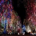 Christmas lights — Stock Photo #1076586