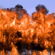 Stock Photo: Explosion fire and smoke