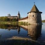 The Pskov Kremlin. Russia — Stock Photo #1012613