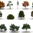 Mega pack trees - Stock Photo
