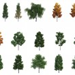 Mega pack trees - 图库照片