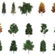 Mega pack bomen — Stockfoto