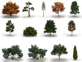 Mega pack trees — Stock Photo