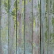 Stock Photo: Hardwood texture