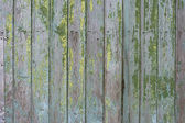 Hardwood texture — Stock Photo