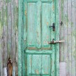 Hardwood door — Stock Photo