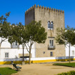 Stock Photo: Cathedral in city Evora, Portugal
