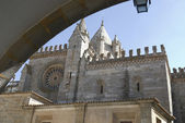 Cathedral in city Evora, Portugal — Stock Photo