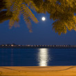 Stock Photo: Full moon with moonlight on river