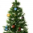 Christmas-tree — Stock Photo