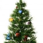 Christmas-tree — Stock Photo