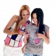 Stock Photo: Young beautiful women using the cellphon