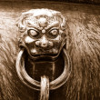 Stock Photo: Ancient bronze lions as handle of vat