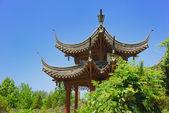 Stone lion in Forbidden City — Stock Photo