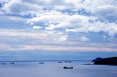 Harbor — Foto de Stock