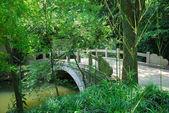 Bridge in asian park — Stock Photo