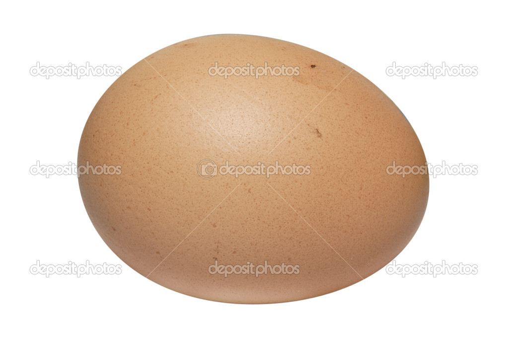 Brown egg under the white background — Stock Photo #1038071