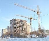 Elevating cranes — Stock Photo