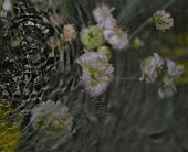 Grunge old photo with water — Stock Photo