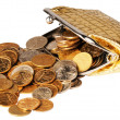 Wallet and scattered coins — Stock Photo