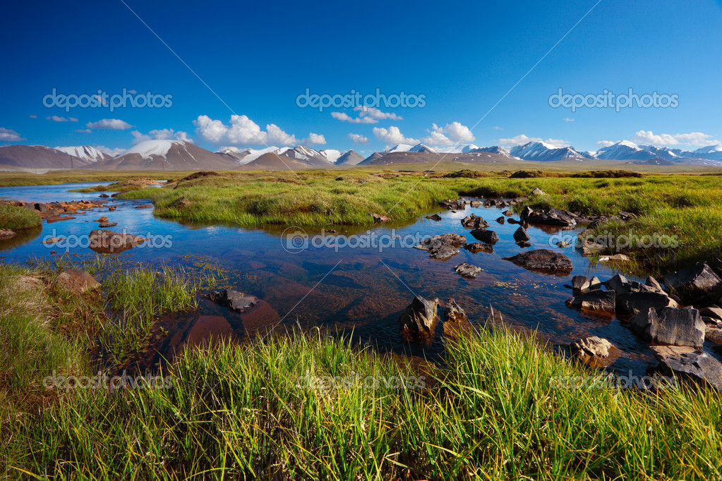 Beautiful mountain landscape with water floods — Stock Photo #1010498