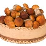 Basket full of mushrooms — Stock Photo #1081439