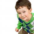 Smiling little boy with sly eyes — Stock Photo #1096610