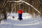 Winter walk — Stock Photo