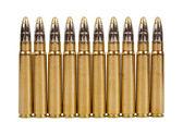 Hunting cartridges — Stock Photo