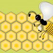 Royalty-Free Stock  : Honeycomb