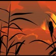 Royalty-Free Stock Imagen vectorial: Sunset