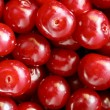 Cherry — Stock Photo #1028652