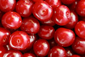 Cherry — Stock Photo