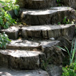 Steps — Stock Photo #1016153