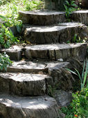 Steps — Stock Photo
