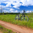 Bicycle in summer rural scene — Stock Photo