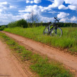 Bicycle in summer rural scene — Stock Photo #1024438